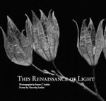 This Renaissance of Light